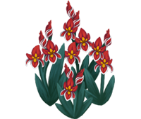 File:Deco 1x1redflowers thumb@2x.png