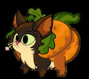 Pumpkin Thumb