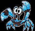 Monster blackicemonster adult