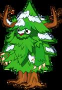 Evergreen Adult