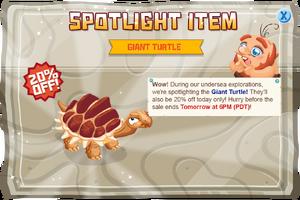 Modal spotlight giantturtle@2x