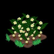 Decoration teaplants thumbnail@2x