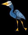 Great blue heron an