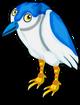 Black-crowned night heron single