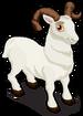 Dall sheep single