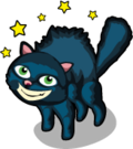 Black Cat single