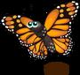 Monarch Butterfly single