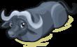 Water Buffalo single