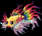 Rainbow betta single