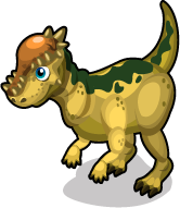 Pachycephalosaurus single
