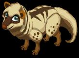 Civet single