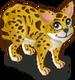 Serval single