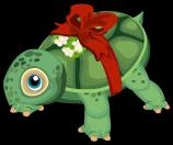 Christmas turtle single