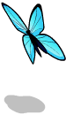 Blue butterfly an