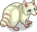 Albino Raccoon single