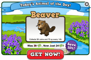 Beaver of the day modal