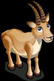 Antelope single