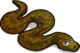 Python single
