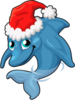 Christmas dolphin single