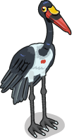 Saddle Billed Stork single