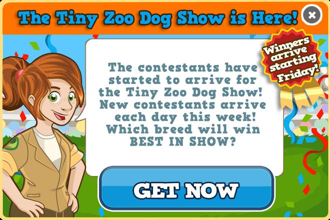 Dog show modal