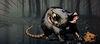 Titanfall 2 Callsign Rat Race