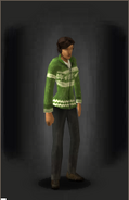Christmas Cardigan - Green - equipped female