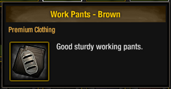Work Pants - Brown