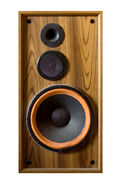 Speaker wook
