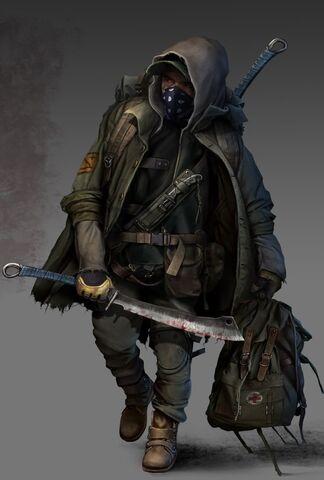 File:Raider survivor 1024.jpg