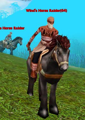 Wind's Horse Raider