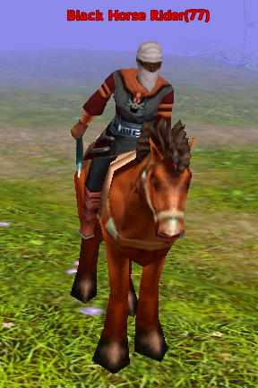 File:Black Horse Rider.png