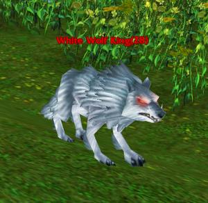 White Wolf King