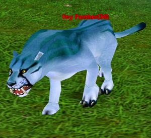 Fey Panther