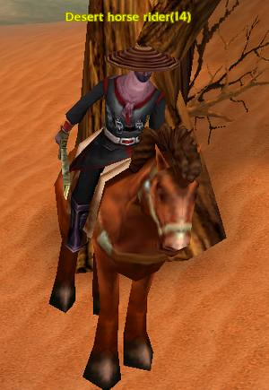 Desert horse rider