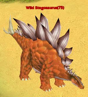 Wild Stegosaurus
