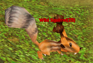 File:Wild Squirrel.png