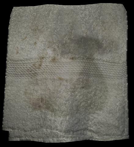 File:Filthy Towel.png