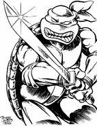 2509344-turtle772