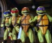 Turtles christmas