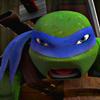 -TMNT-2012-teenage-mutant-ninja-turtles-34454237-100-100