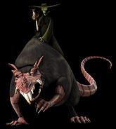12-rat-king
