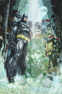 Batman vs. TMNT (4)