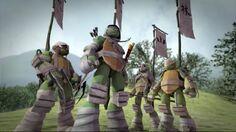 Vision Quest Turtles