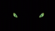 File:The eyes.png