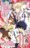 Toaru Majutsu no Index Manga v11.5 cover