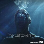 The Leftoverstv