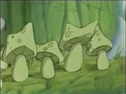 Toadstools symphony