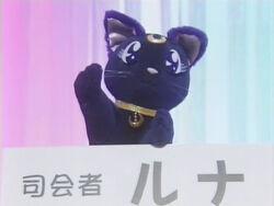 Lunacat
