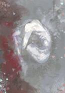 Ishida's illustration from tumblr